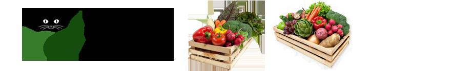 Farma Macek – Zelenina